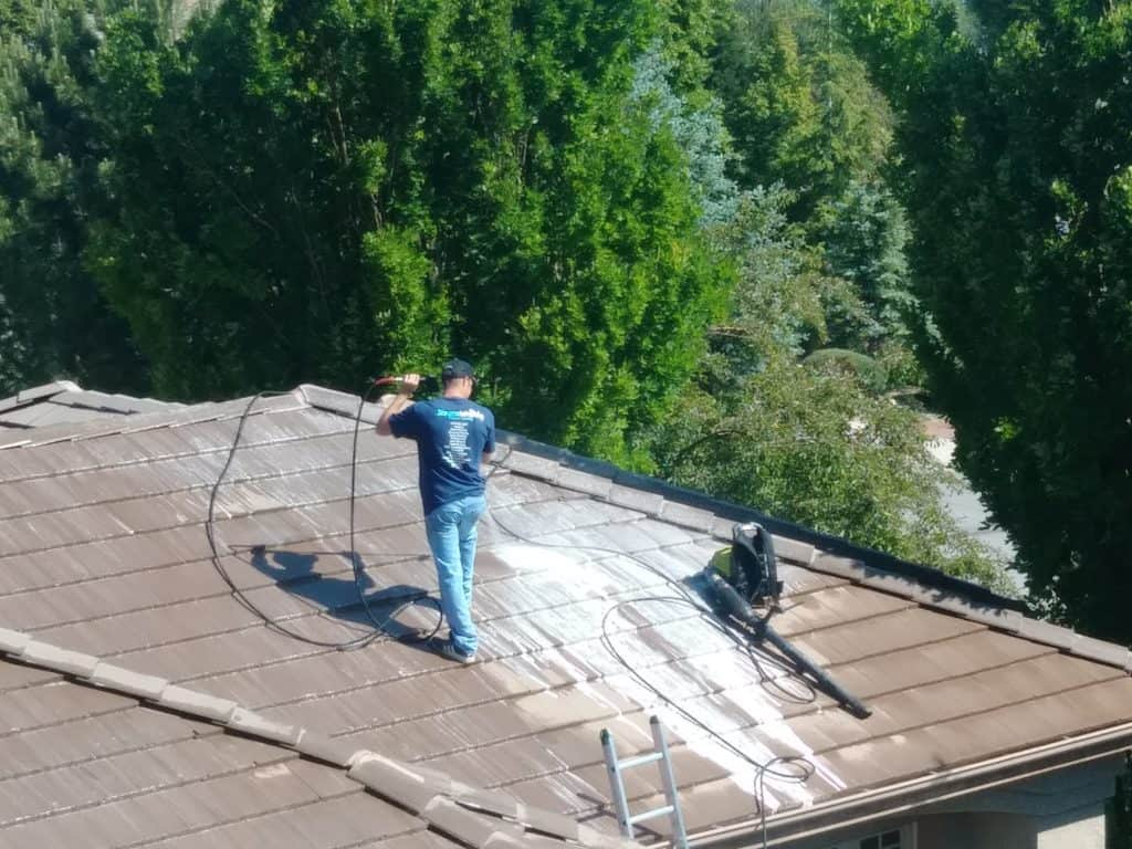 Steamworks roof cleaning