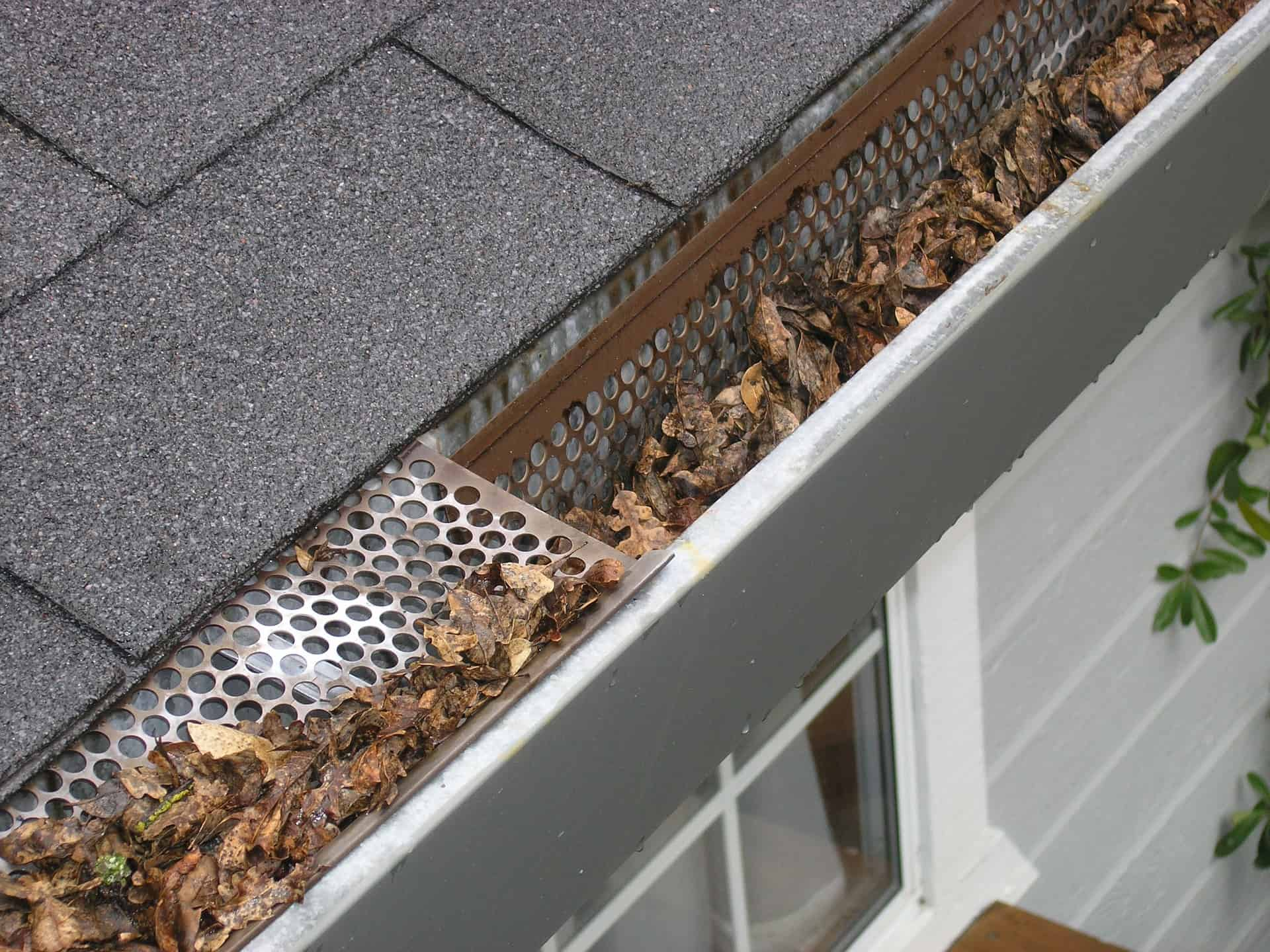 Gutter Cleaning – Preventative Maintnance